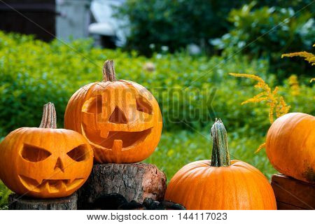 Halloween.  Jack-o-lantern. Scary Pumpkin With A Smile Near Candles And Spider In Green Forest, Outd