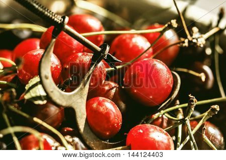 Great remove seeds from ripe red cherries