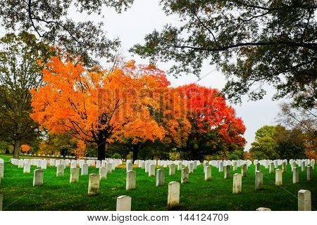 Arlington National Cemetery  in Autumn - Near to Washington DC USA