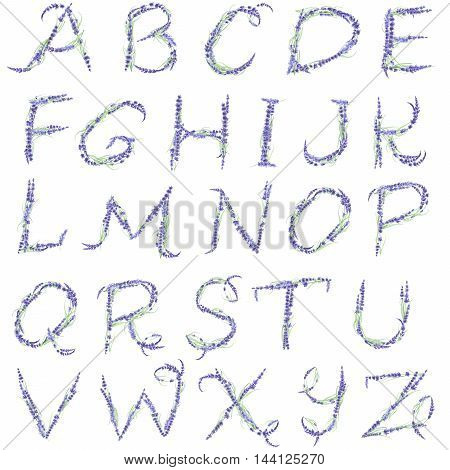 English alphabet of watercolor lavender flowers, isolated hand drawn on a white background, wedding design, english capital letters for the festive and wedding decor and cards