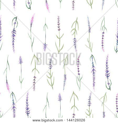 Floral seamless pattern with lavender painted in watercolor on a white background