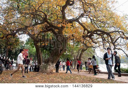 HA NOI, VIET NAM, August 12, 2016, groups of young people roam the park gardens, Hoan Kiem Lake, Ha Noi center, in the fall