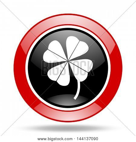 four-leaf clover round glossy red and black web icon