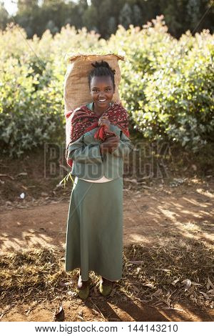 OROMIA, ETHIOPIA:NOVEMBER 6, 2014: Portrait of unidentified girl carrying heavy load in Oromia, Ethiopia