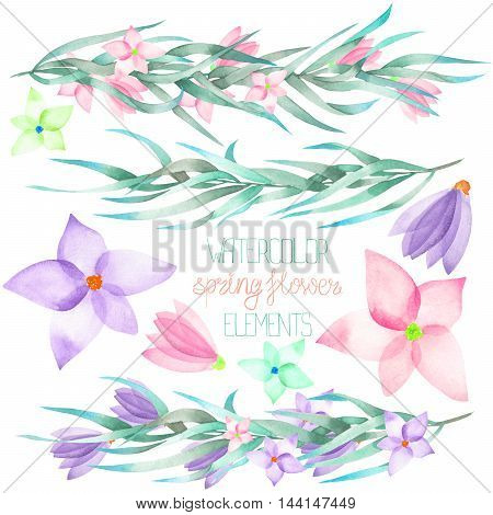 A set with the isolated watercolor floral elements: branches, flowers, leaves, hand-drawn on a white background, for self-compilation of the bouquets and ornaments