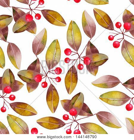 Seamless Christmas pattern with branches with the red berries and leaves (bird-cherry tree) painted in watercolor on a white background