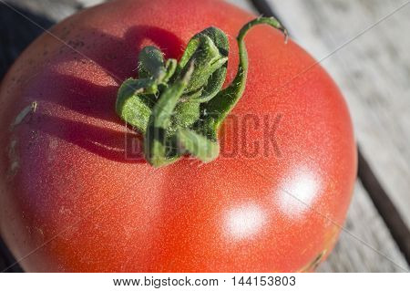 Tomato On Boards