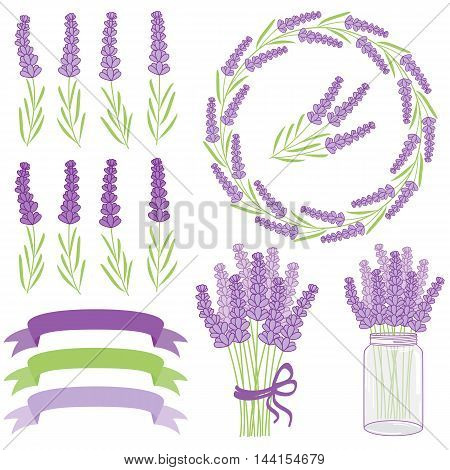 Vector purple and green floral lavender set