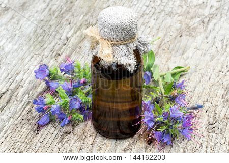 Medicinal plant Echium vulgare (viper's bugloss and blueweed) and pharmaceutical bottle on old wooden table. It is used in herbal medicine good honey plant