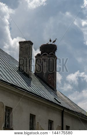 storks in the nest located on the chimney of an old building