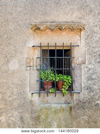 Window With Flower Pots In Tossa De Mar