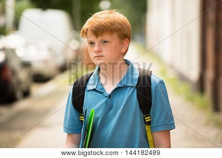 Portrait Of A Contemplated Schoolboy With Folder On A Way To School