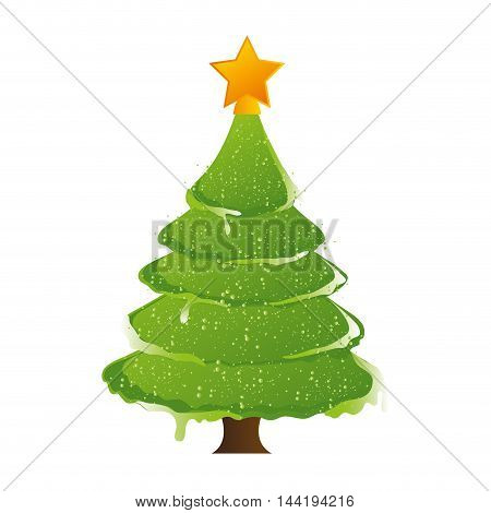 pine tall tree plant with traditional star christmas decoration symbol vector illustration
