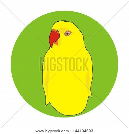 Vector indian yellow parrot portrait in a green circle