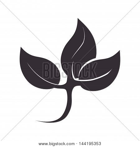 leaves growing plant ecology nature enviromental silhouette vector illustration