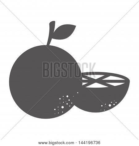 orange fruit natural half organic food silhouette vector illustration