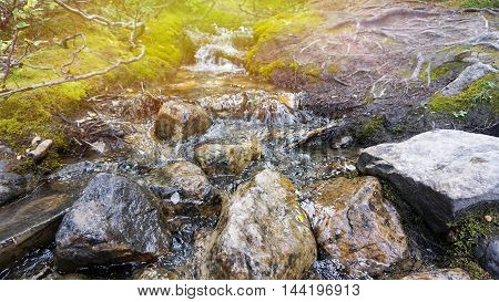 Small brook and stones with green moss and sunbeam effect
