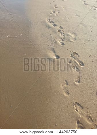 people, beaches, sea, footprint, water, sand, summer, vacations, nature, illustrations, sky, vector, human, sunlight, walking, beauty, color, men, white, space, relaxation, foot,  wave
