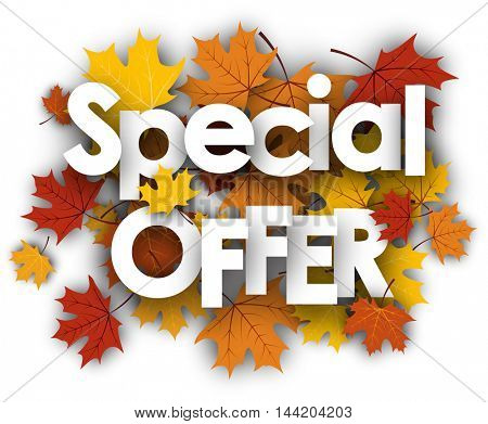 Special offer white background with golden maple leaves. Vector illustration.