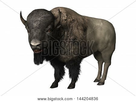 3D Rendering Bison On White