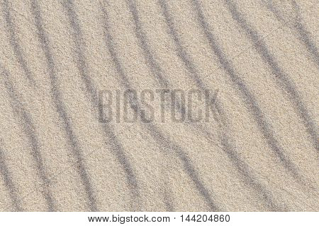 Sea sand dunes on a sunny top view
