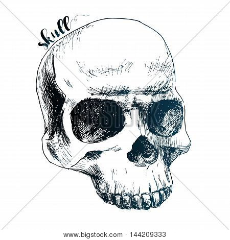 Beautiful vector image with nice cartoon human skull
