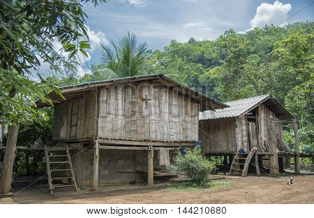 Bamboo house in the jungle hut shack