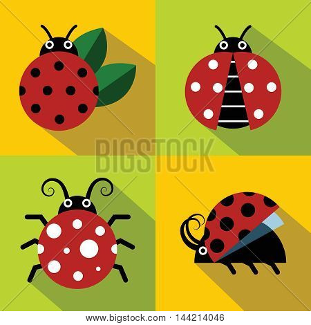 Ladybug icons in flat style on color background. Set of insect, vector illustration