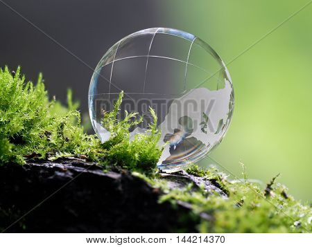 LargLarge clear glass ball lying on the moss. Concept - lightness transparency of relations cleanliness ecologye clear glass ball lying on the moss. Concept - lightness transparency of relations cleanliness ecology