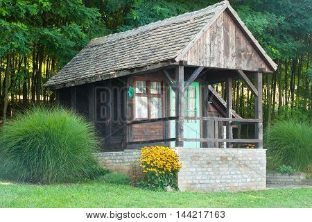 Beautiful old wooden cabin in nature, yellow flowers in front