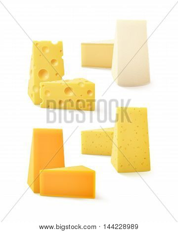 Vector Set of Triangular Pieces of Various Kind of Cheese Swiss Cheddar Bri Camembert Close up Isolated on White Background