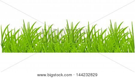 Backgrounds Of Green Grass growth icon concept nature blade garden