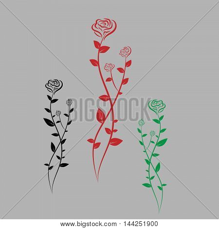 Three colorful roses. Flower icon. Rose vector.
