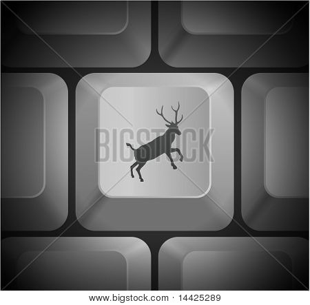 Deer Icon on Computer Keyboard Original Illustration
