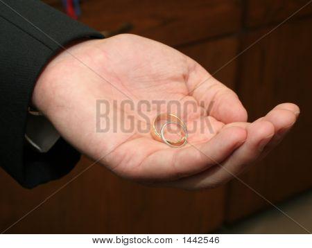 Wedding Rings In Hand