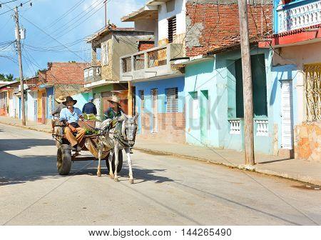 Farmers In Cart