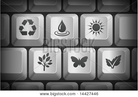 Nature Icons on Computer Keyboard Buttons Original Illustration