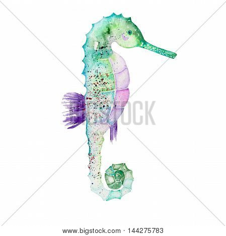 Illustration of isolated green seahorse painted in watercolor on a white background