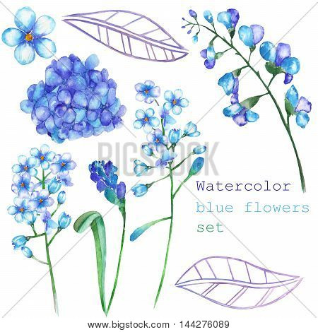 A set with the isolated floral elements in the form of watercolor blue flowers, blooming flowers (Hydrangea, Myosotis) on a white background for a decoration