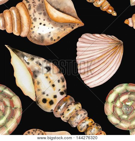 A seamless pattern with the isolated shells, painted in a watercolor on a black background