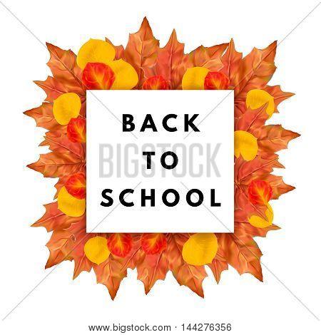 Back to school banner. Autumn leaves frame.