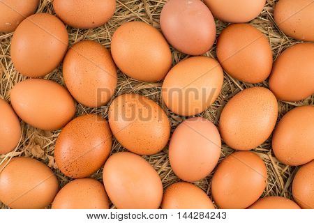 Chicken eggs lying on hay. Symbol of life and Easter.