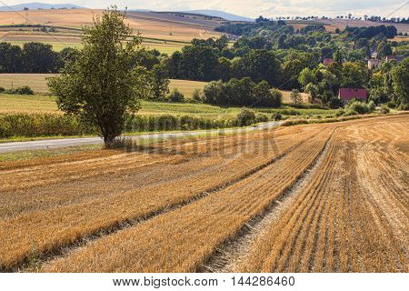 Village in South Poland in Sudety Mountains