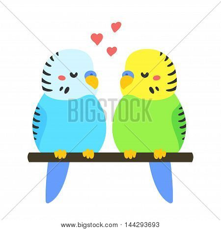 Cute parakeet couple in love. Hand drawn cartoon budgies perched on branch adorable bird illustration. Valentines day greeting card.