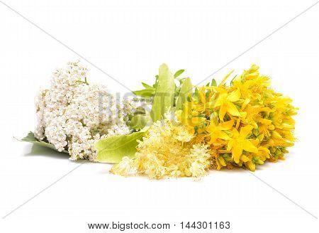 Hypericum flowers, linden flowers and yarrow flowers