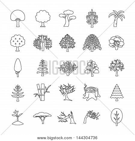 25 Trees outlines vector icons collection set