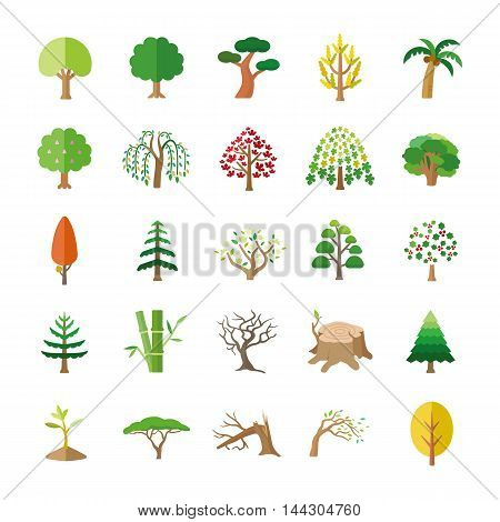25 Trees color vector icons collection set