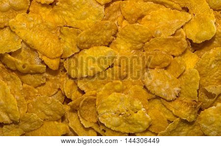 Close-up of a large amount of corn flakes.