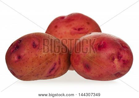 New red potatoes rowed isolated on white background