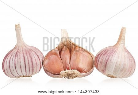 Raw garlic bulbs isolated on white background cutout